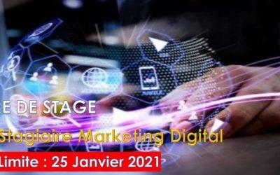 Offre de stage académique en Marketing Digital chez African New Dream