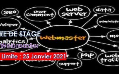 Offre de stage académique en Webmaster chez African New Dream
